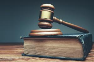 Was sind Domainrechte und welche Pflichten gibt es?